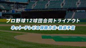 プロ野球12球団合同トライアウトのネット・テレビ中継の放送予定