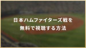 日本ハムファイターズ戦を無料で視聴する方法