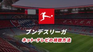 ブンデスリーガの試合ライブ中継をネット、テレビで視聴する方法