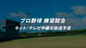 プロ野球全12球団の練習試合のネット・テレビ中継の放送予定まとめ